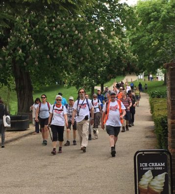 A large group pf walkers lead by a smiling man in an orange high-vis vest, walking down a hill on a wide path bordered by trees, with a sign promising ice-cream in front of them!