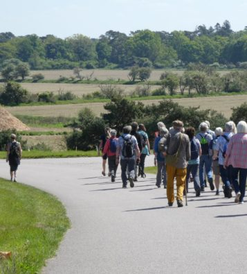 A large group of people walking along a solid track with rolling green countryside in the background